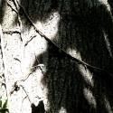 ombresetlumieregalerie1-1