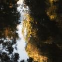 reflets-2017-2-5