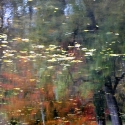 refletsgalerie1-9